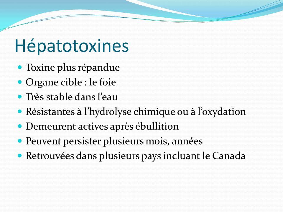 Hépatotoxines Toxine plus répandue Organe cible : le foie Très stable dans leau Résistantes à lhydrolyse chimique ou à loxydation Demeurent actives ap