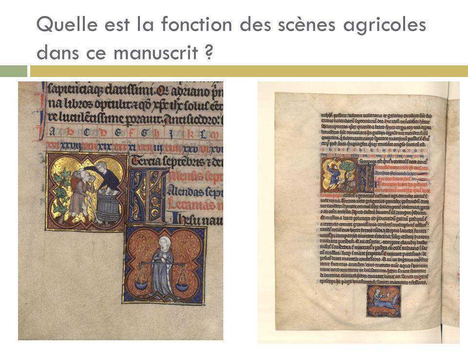 Quelle est la fonction des scènes agricoles dans ce manuscrit ?