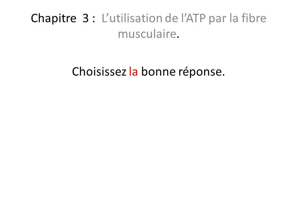 Chapitre 3 : Lutilisation de lATP par la fibre musculaire. Choisissez la bonne réponse.