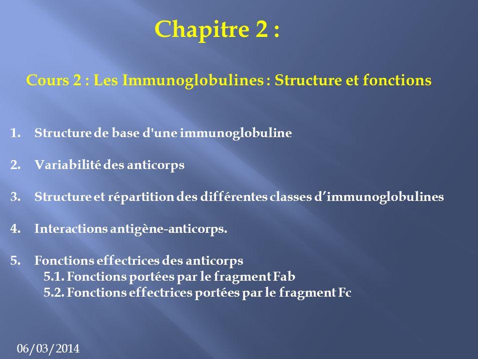 Chapitre 2 : 06/03/2014 Cours 2 : Les Immunoglobulines : Structure et fonctions 1.Structure de base d une immunoglobuline 2.Variabilité des anticorps 3.Structure et répartition des différentes classes dimmunoglobulines 4.Interactions antigène-anticorps.
