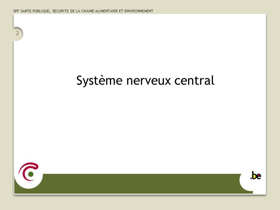 SPF SANTE PUBLIQUE, SECURITE DE LA CHAINE ALIMENTAIRE ET ENVIRONNEMENT 2 Système nerveux central