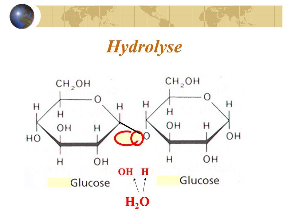 Hydrolyse H2OH2O OHH