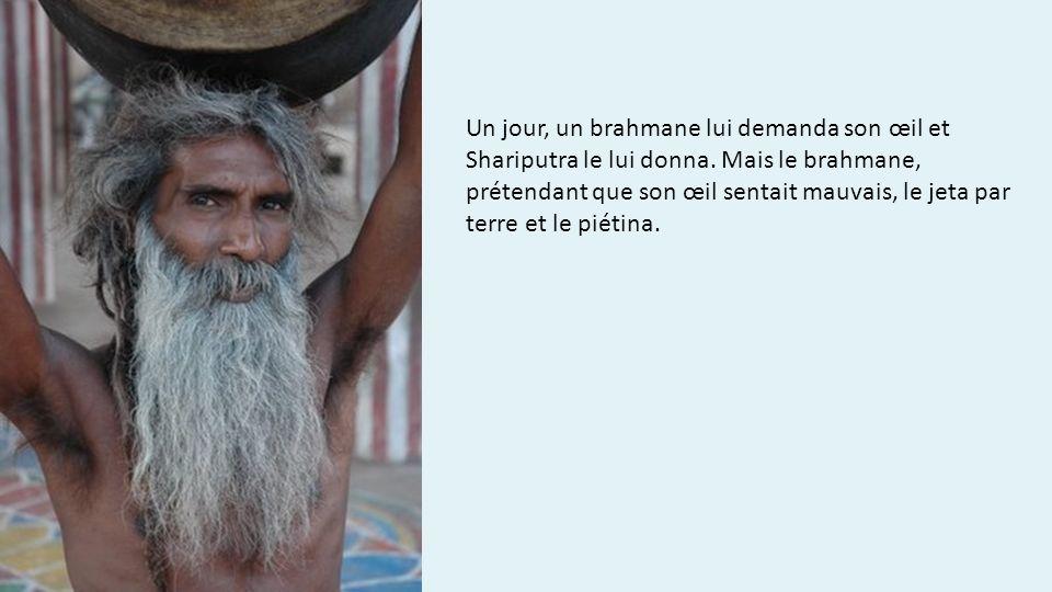 Un jour, un brahmane lui demanda son œil et Shariputra le lui donna. Mais le brahmane, prétendant que son œil sentait mauvais, le jeta par terre et le