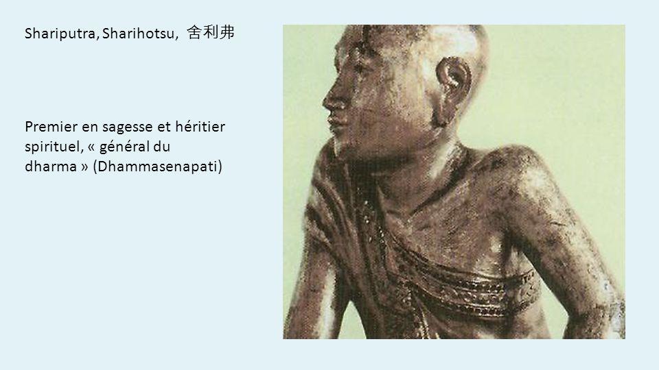 Shariputra, Sharihotsu, Premier en sagesse et héritier spirituel, « général du dharma » (Dhammasenapati)
