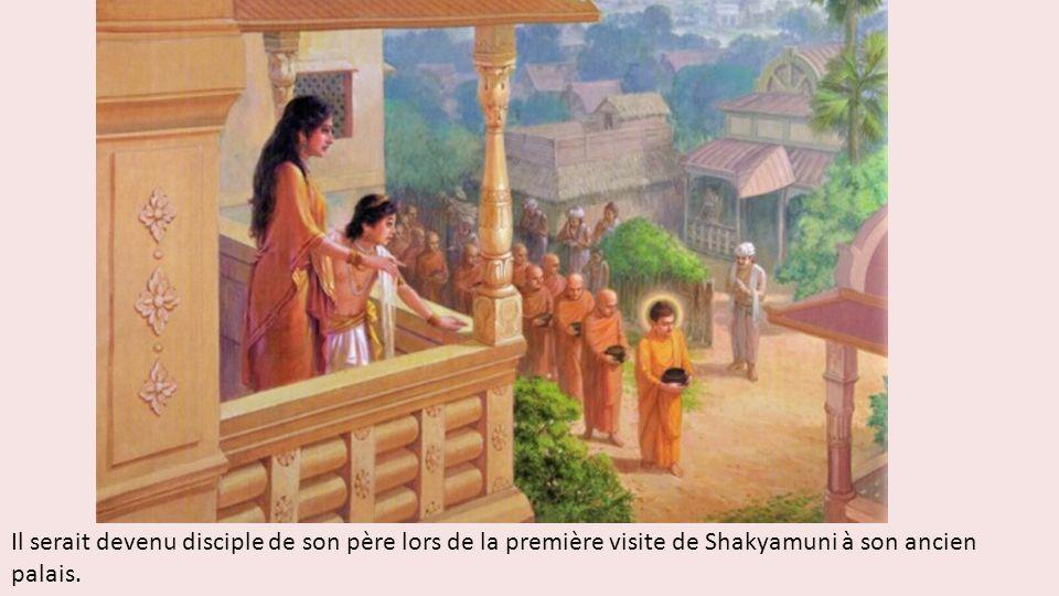 Il serait devenu disciple de son père lors de la première visite de Shakyamuni à son ancien palais.