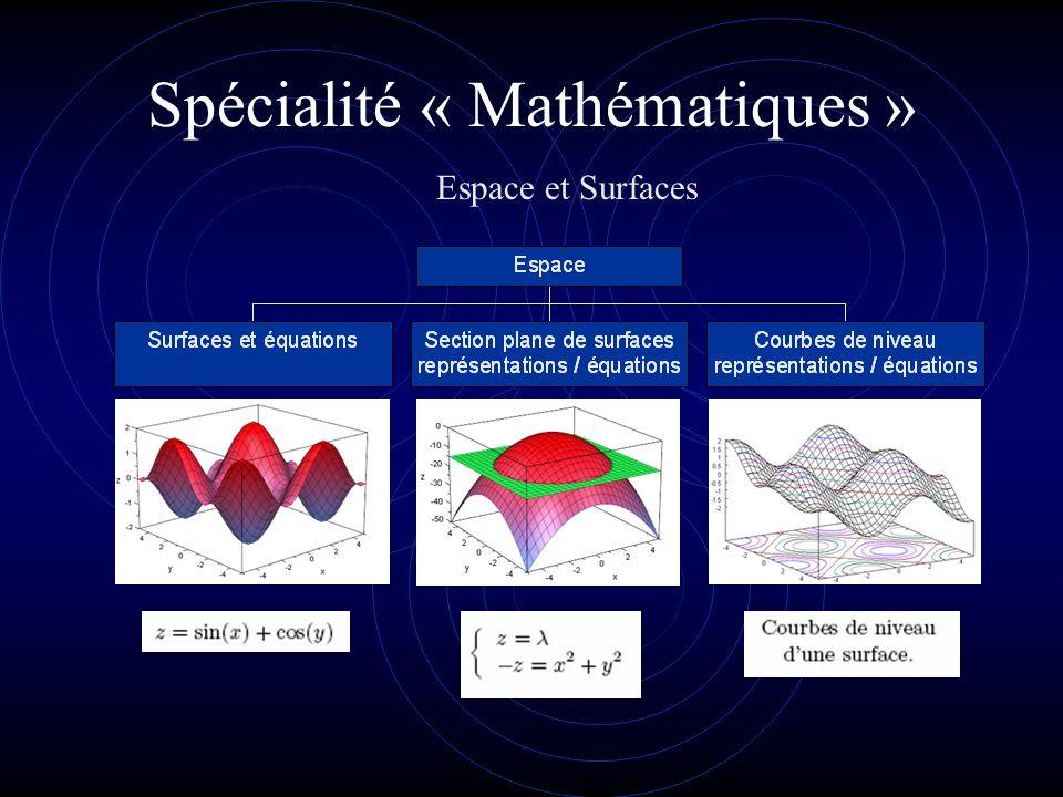 Spécialité « Mathématiques » Les nombres premiers