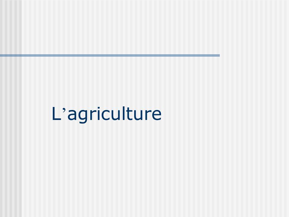 Tendances de l emploi : agriculture (donn é es de l IMSS) et maquiladoras 300 400 500 600 700 800 900 1 000 1 100 198319841985198619871988198919901991