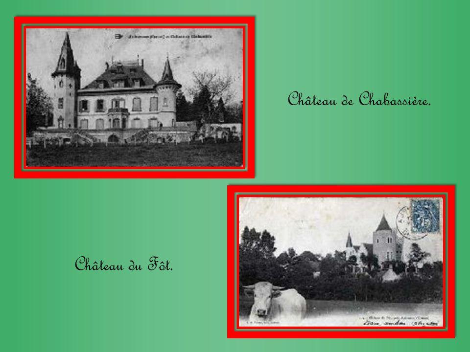 Château de Chabassière. Château du Fôt.