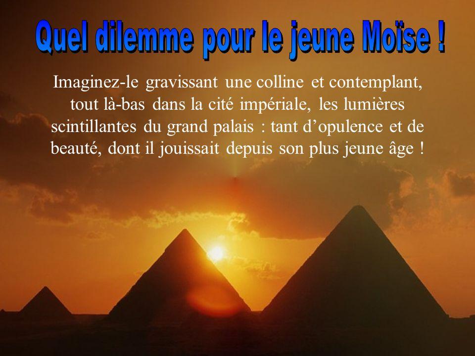 Quand il était bébé, Moïse fut découvert dans un panier, parmi les roseaux du Nil, par la propre fille de Pharaon.