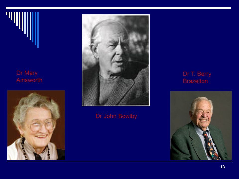 13 Dr John Bowlby Dr T. Berry Brazelton Dr Mary Ainsworth