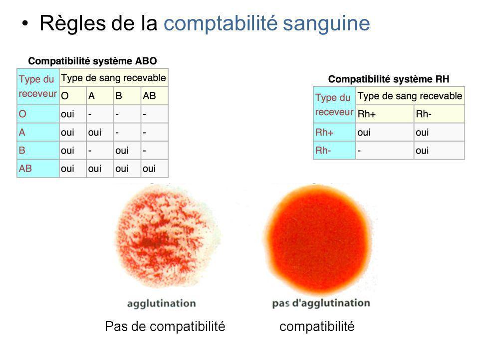 Règles de la comptabilité sanguine Pas de compatibilitécompatibilité