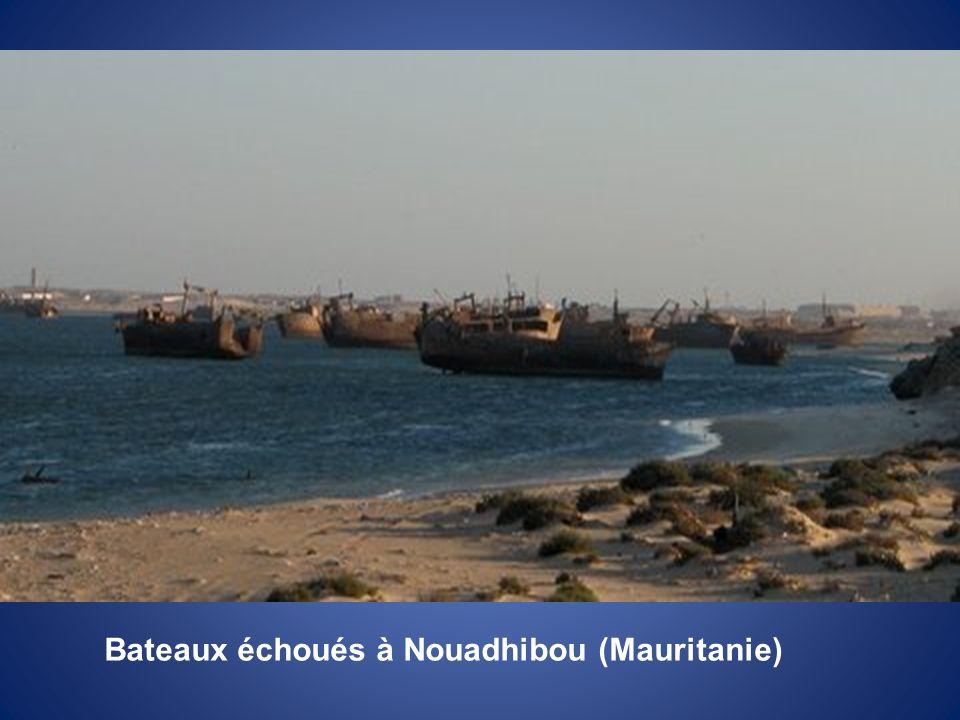 Les falaises du Cap Blanc à Nouadhibou (Mauritanie)
