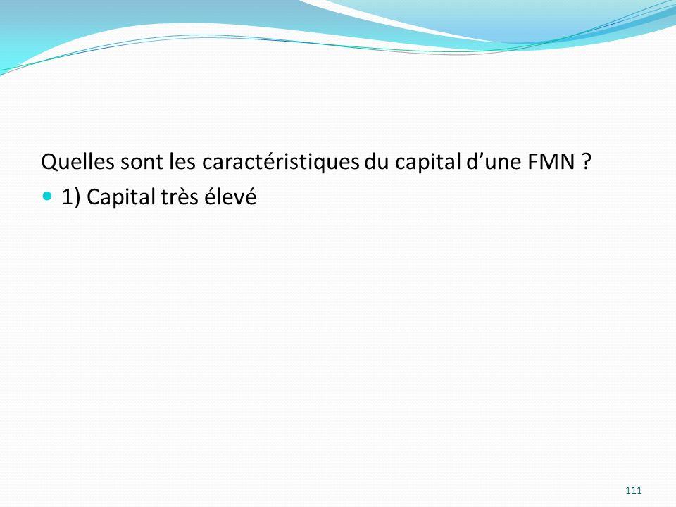 Quelles sont les caractéristiques du capital dune FMN ? 1) Capital très élevé 111