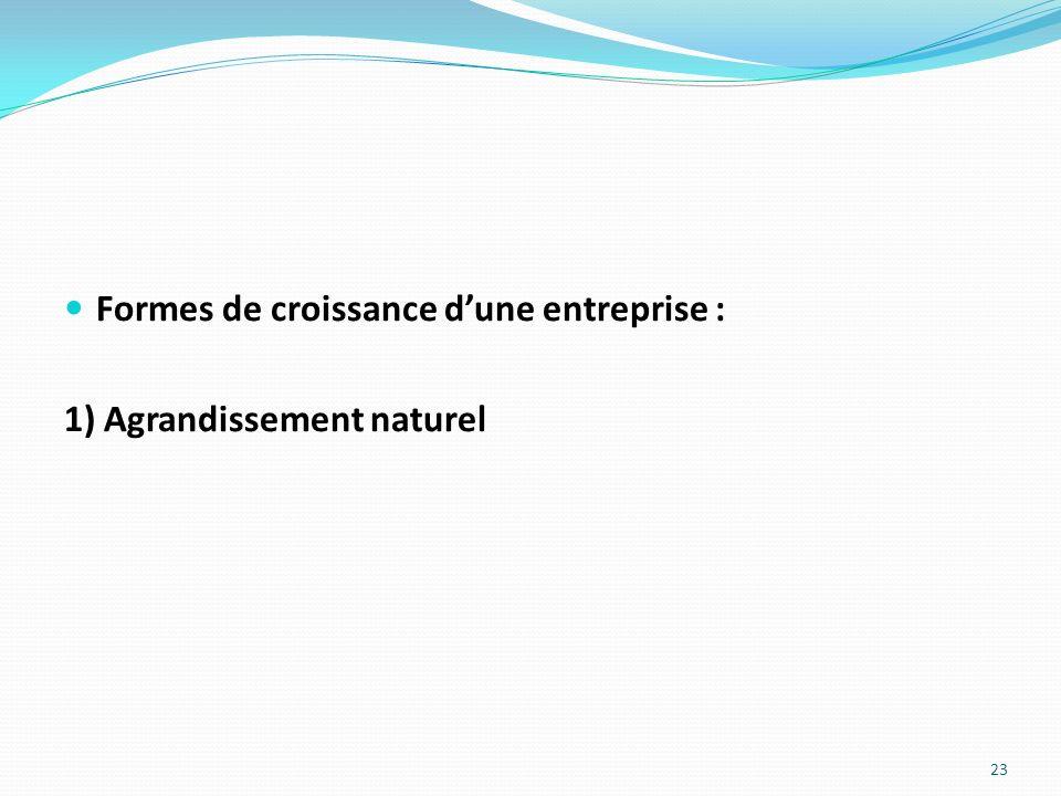 Formes de croissance dune entreprise : 1) Agrandissement naturel 23