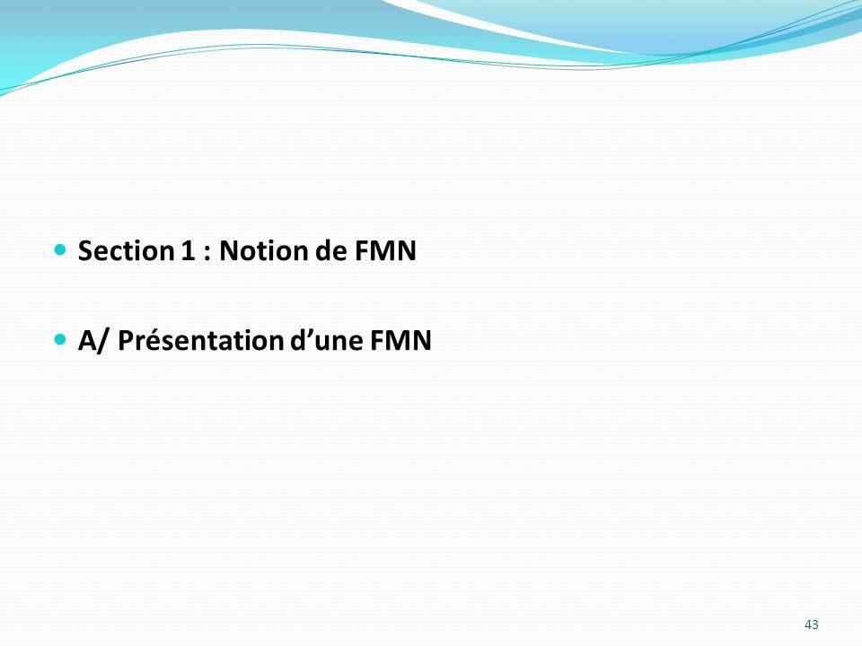 Section 1 : Notion de FMN A/ Présentation dune FMN 43