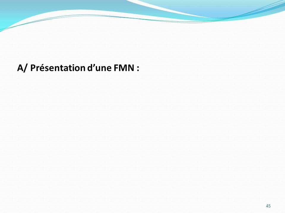 A/ Présentation dune FMN : 45