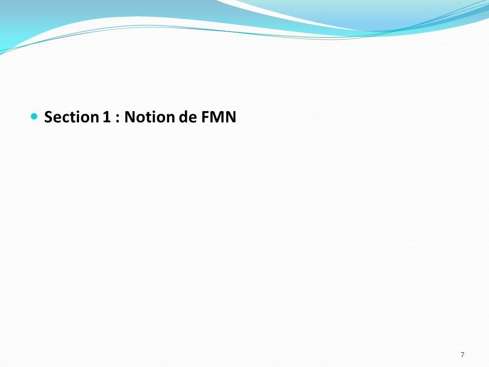 Section 1 : Notion de FMN 7