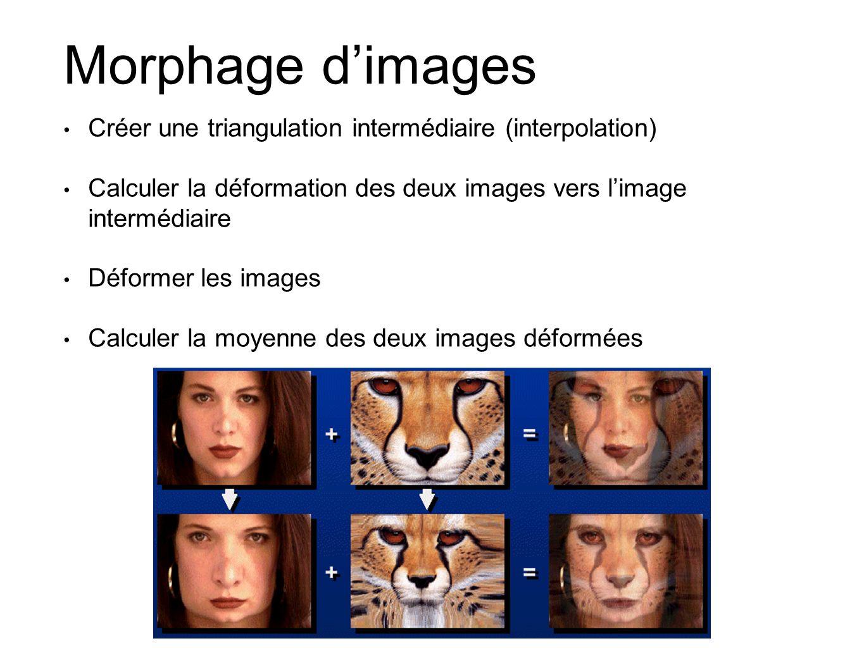 Morphage dimages Créer une triangulation intermédiaire (interpolation) Calculer la déformation des deux images vers limage intermédiaire Déformer les images Calculer la moyenne des deux images déformées
