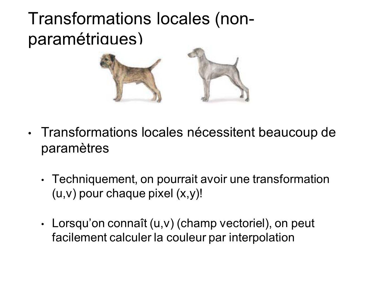 Transformations locales (non- paramétriques) Transformations locales nécessitent beaucoup de paramètres Techniquement, on pourrait avoir une transformation (u,v) pour chaque pixel (x,y).