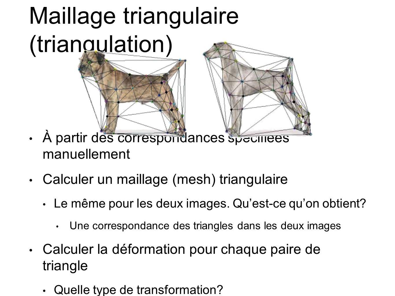 Maillage triangulaire (triangulation) À partir des correspondances spécifiées manuellement Calculer un maillage (mesh) triangulaire Le même pour les deux images.