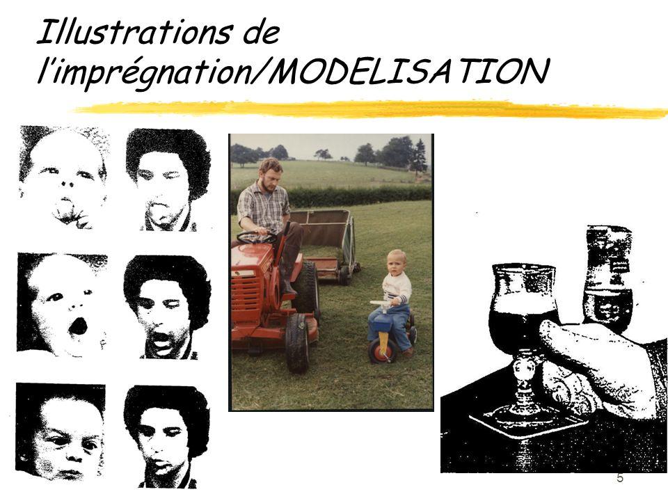 6 1.Imprégnation 2.MODELISATION 3.Montrez-moi 4.(Modèles) 5.Rue, T.V..