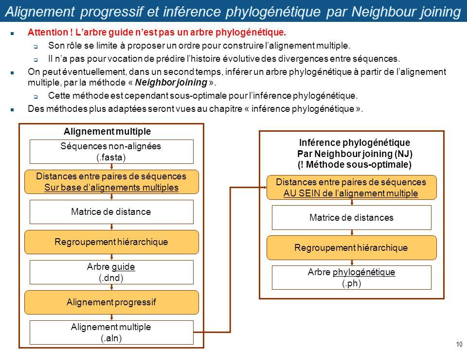 Alignement progressif et inférence phylogénétique par Neighbour joining Attention ! Larbre guide nest pas un arbre phylogénétique. Son rôle se limite