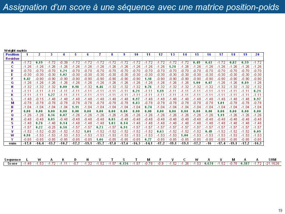 Assignation dun score à une séquence avec une matrice position-poids 19