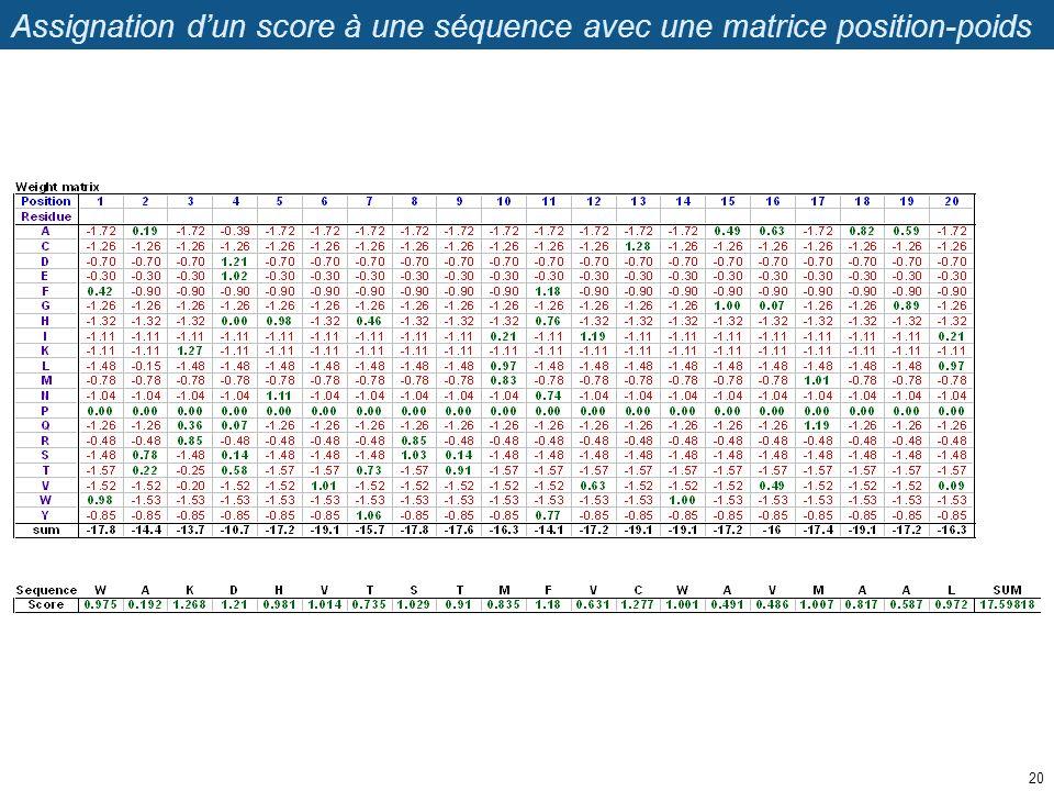 Assignation dun score à une séquence avec une matrice position-poids 20