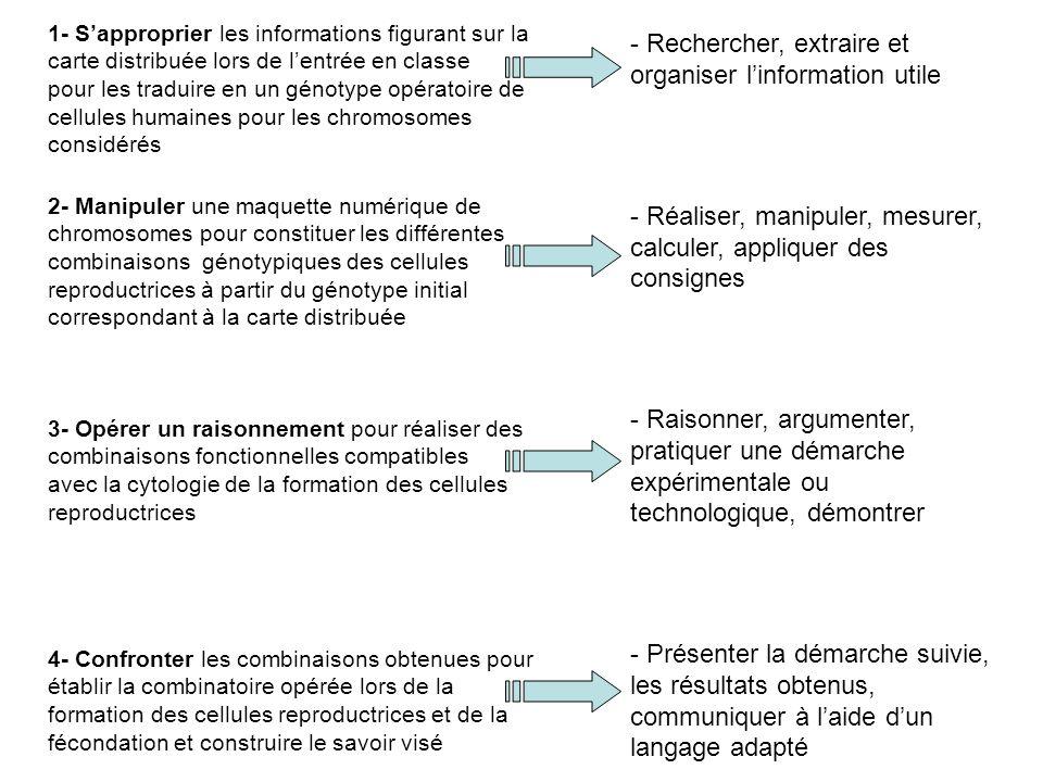 - Rechercher, extraire et organiser linformation utile - Réaliser, manipuler, mesurer, calculer, appliquer des consignes - Raisonner, argumenter, pratiquer une démarche expérimentale ou technologique, démontrer - Présenter la démarche suivie, les résultats obtenus, communiquer à laide dun langage adapté 1- Sapproprier les informations figurant sur la carte distribuée lors de lentrée en classe pour les traduire en un génotype opératoire de cellules humaines pour les chromosomes considérés 2- Manipuler une maquette numérique de chromosomes pour constituer les différentes combinaisons génotypiques des cellules reproductrices à partir du génotype initial correspondant à la carte distribuée 3- Opérer un raisonnement pour réaliser des combinaisons fonctionnelles compatibles avec la cytologie de la formation des cellules reproductrices 4- Confronter les combinaisons obtenues pour établir la combinatoire opérée lors de la formation des cellules reproductrices et de la fécondation et construire le savoir visé