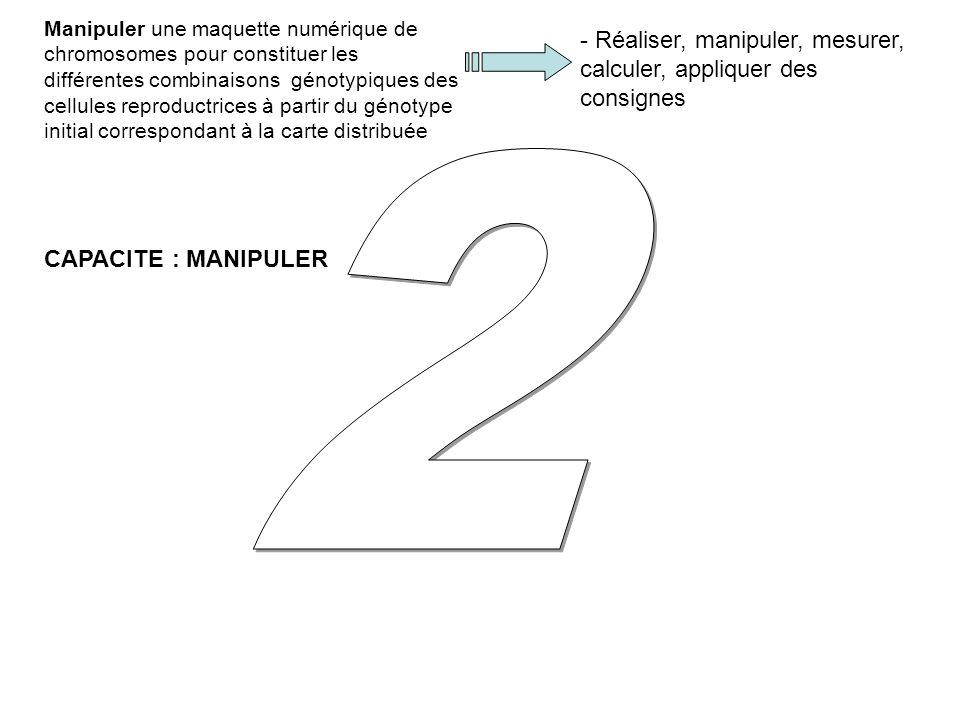 - Réaliser, manipuler, mesurer, calculer, appliquer des consignes Manipuler une maquette numérique de chromosomes pour constituer les différentes combinaisons génotypiques des cellules reproductrices à partir du génotype initial correspondant à la carte distribuée CAPACITE : MANIPULER