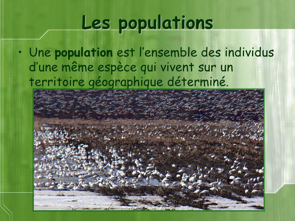 Les populations Une population est lensemble des individus dune même espèce qui vivent sur un territoire géographique déterminé.
