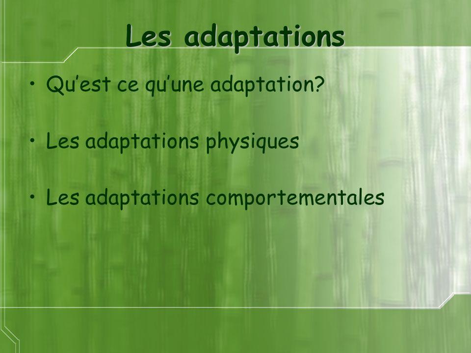 Les adaptations Quest ce quune adaptation? Les adaptations physiques Les adaptations comportementales