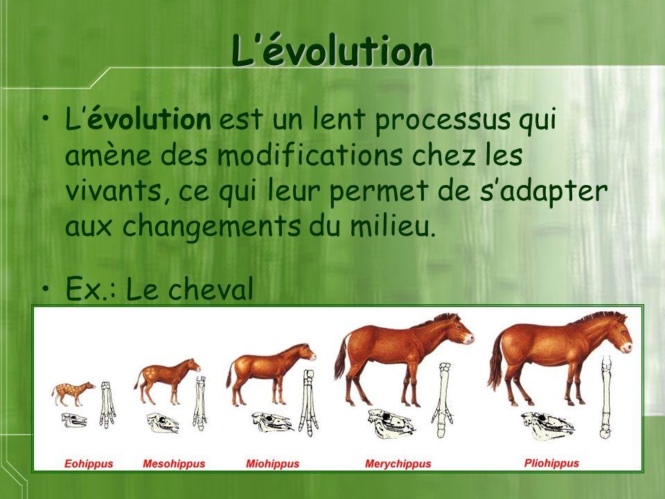 Lévolution Lévolution est un lent processus qui amène des modifications chez les vivants, ce qui leur permet de sadapter aux changements du milieu. Ex