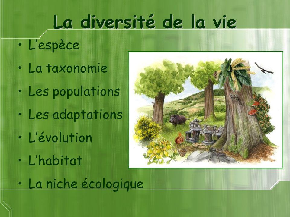 La diversité de la vie Lespèce La taxonomie Les populations Les adaptations Lévolution Lhabitat La niche écologique