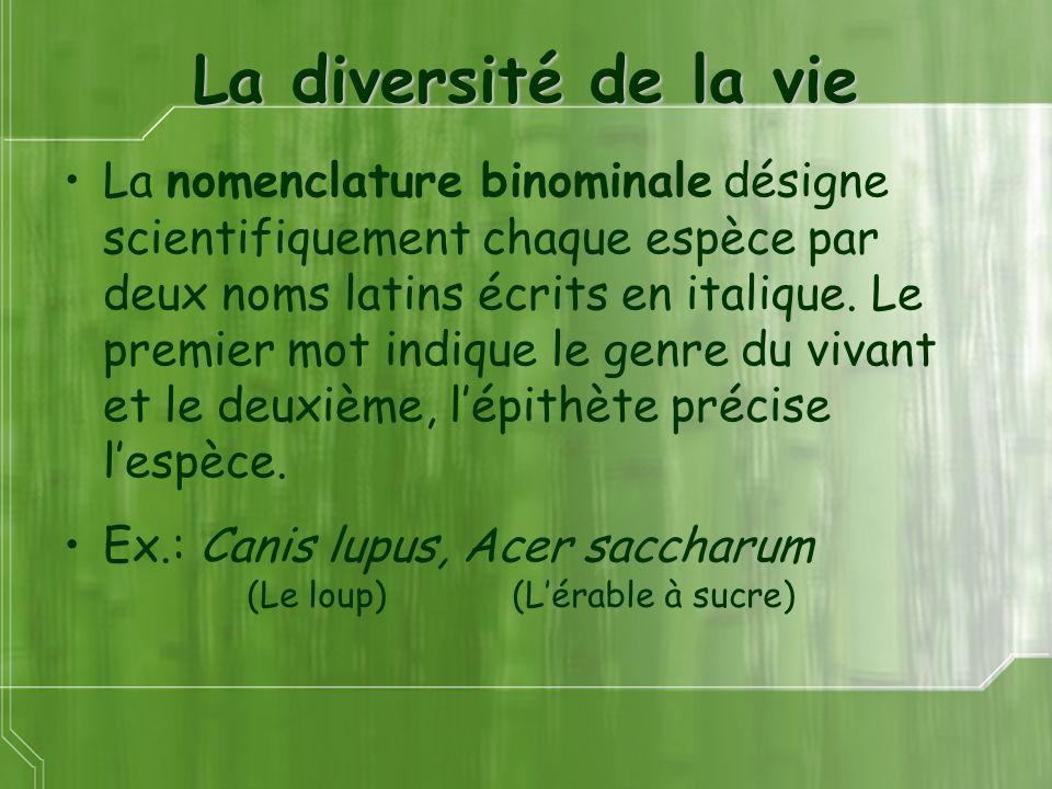La diversité de la vie La nomenclature binominale désigne scientifiquement chaque espèce par deux noms latins écrits en italique. Le premier mot indiq