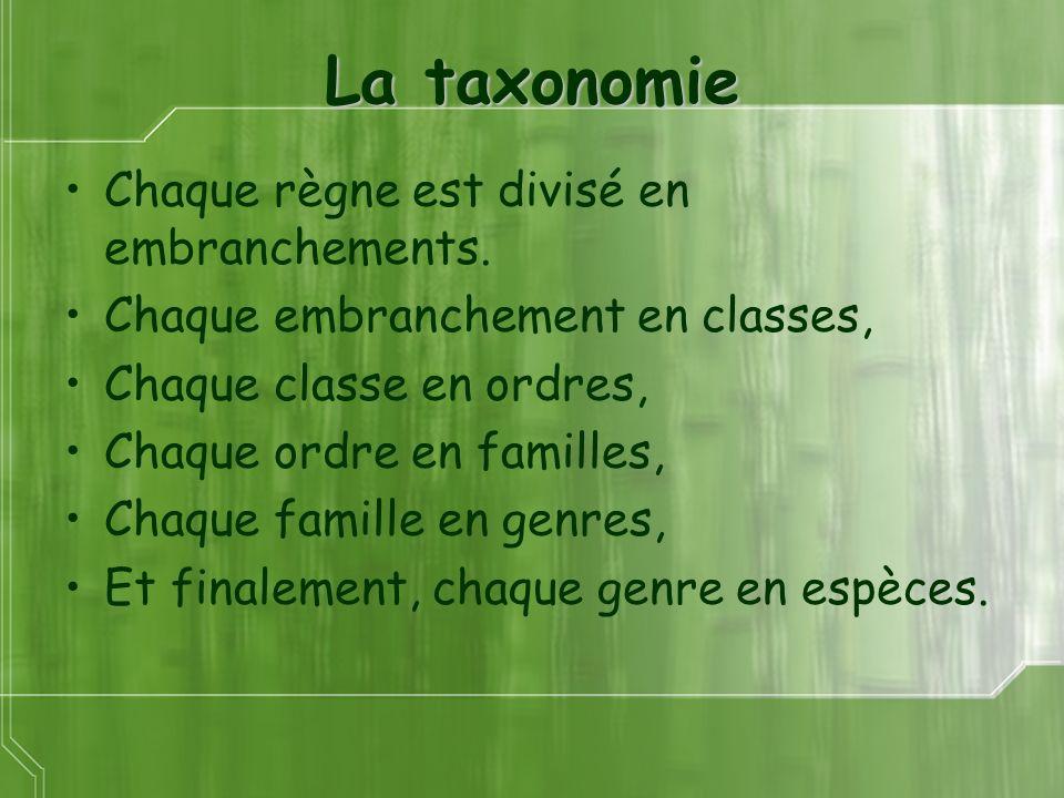 La taxonomie Chaque règne est divisé en embranchements. Chaque embranchement en classes, Chaque classe en ordres, Chaque ordre en familles, Chaque fam