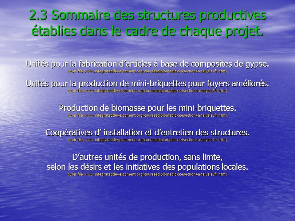 2.3 Sommaire des structures productives établies dans le cadre de chaque projet.
