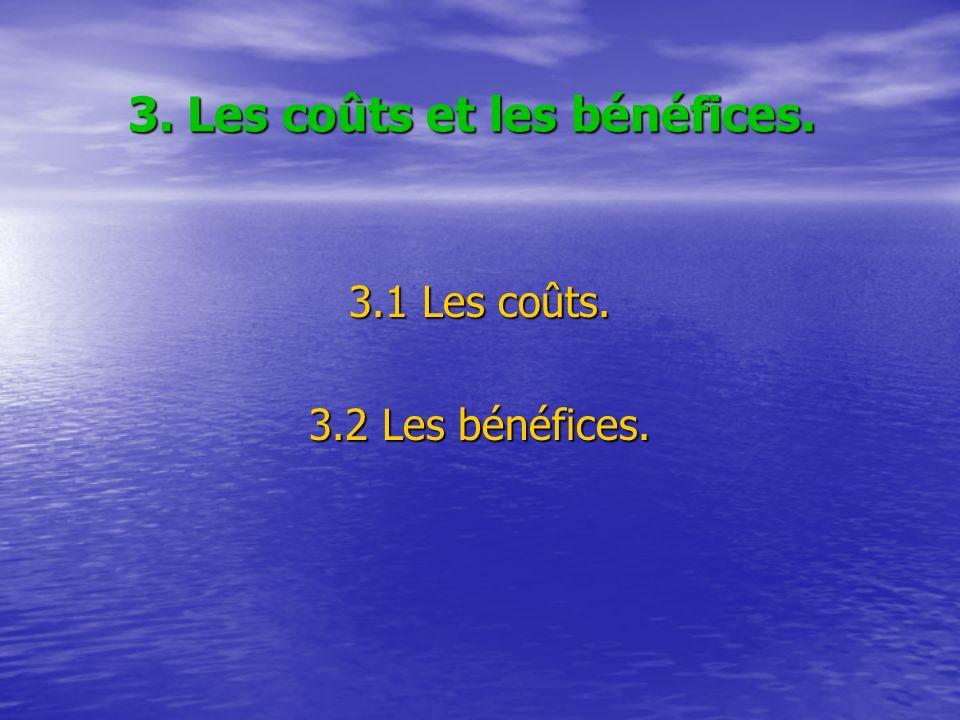 3. Les coûts et les bénéfices. 3.1 Les coûts. 3.2 Les bénéfices.