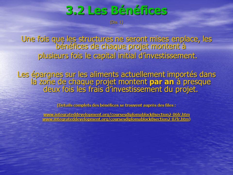3.2 Les Bénéfices (Dia. 1) Une fois que les structures ne seront mises enplace, les bénéfices de chaque projet montent à plusieurs fois le capital ini