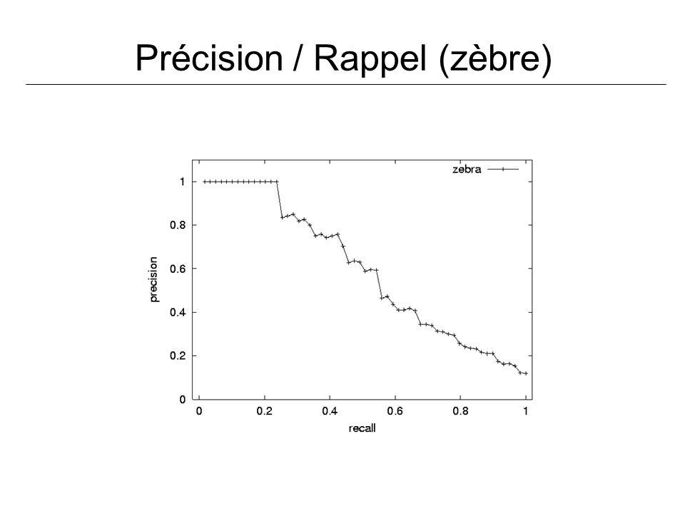 Précision / Rappel (zèbre)