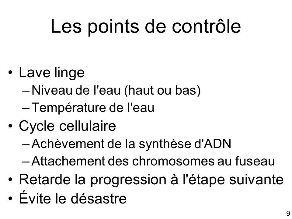 9 Les points de contrôle Lave linge –Niveau de l'eau (haut ou bas) –Température de l'eau Cycle cellulaire –Achèvement de la synthèse d'ADN –Attachemen