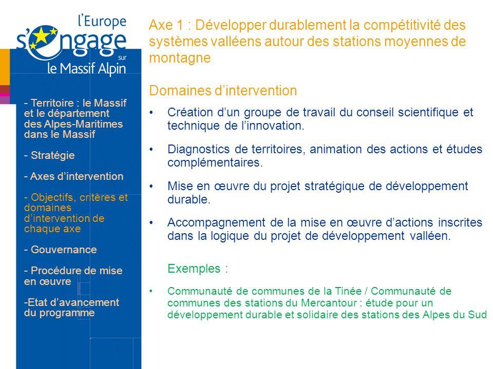 Axe 1 : Développer durablement la compétitivité des systèmes valléens autour des stations moyennes de montagne Domaines dintervention Création dun gro