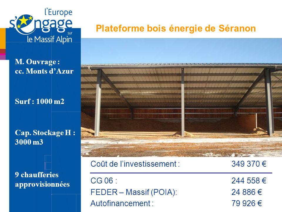 Plateforme bois énergie de Séranon Surf : 1000 m2 Cap. Stockage H : 3000 m3 M. Ouvrage : cc. Monts dAzur 9 chaufferies approvisionnées Coût de linvest