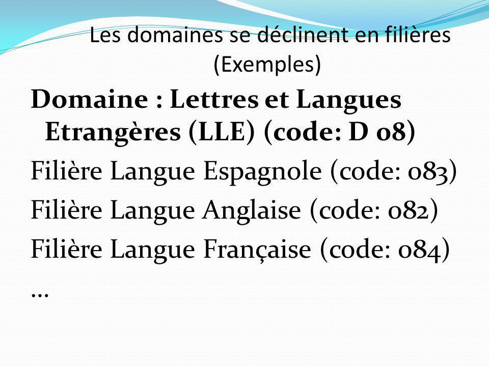 Les domaines se déclinent en filières (Exemples) Domaine : Lettres et Langues Etrangères (LLE) (code: D 08) Filière Langue Espagnole (code: 083) Filière Langue Anglaise (code: 082) Filière Langue Française (code: 084) …
