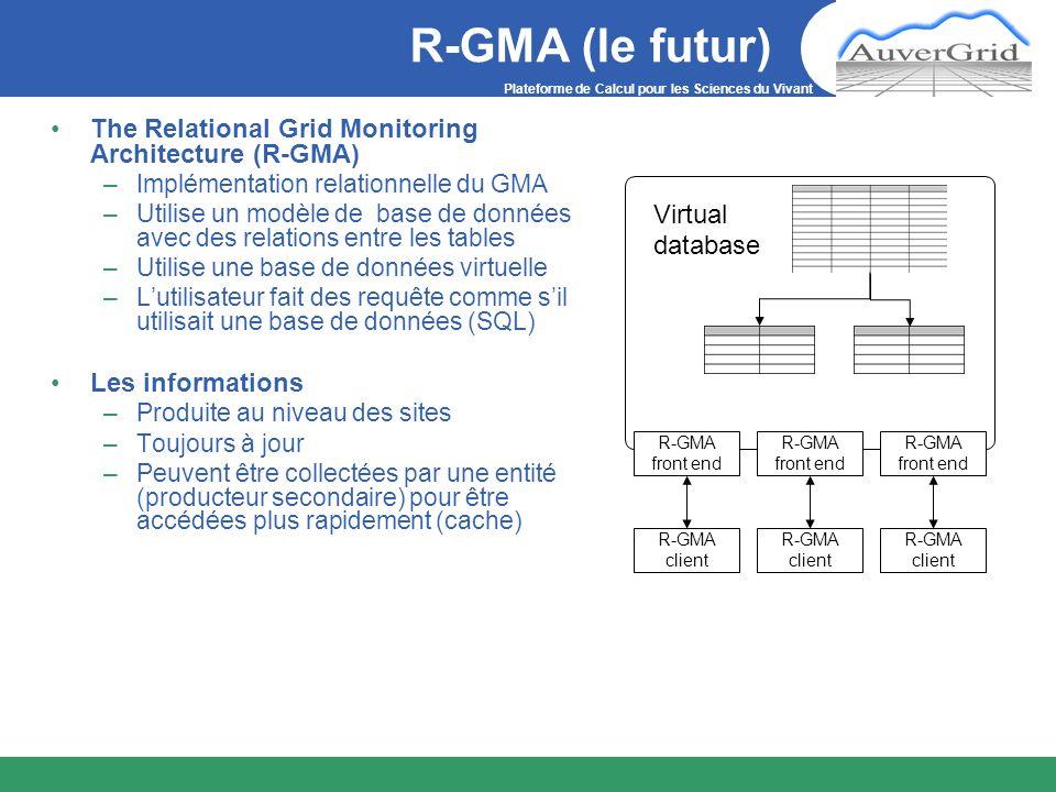 Plateforme de Calcul pour les Sciences du Vivant R-GMA (le futur) The Relational Grid Monitoring Architecture (R-GMA) –Implémentation relationnelle du