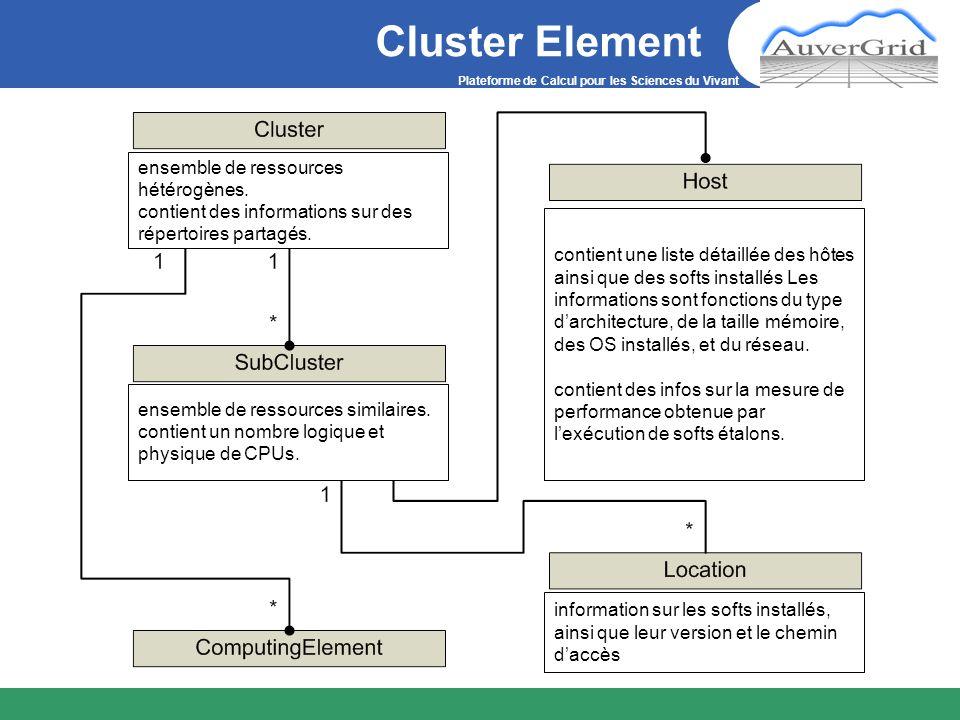 Plateforme de Calcul pour les Sciences du Vivant Cluster Element ensemble de ressources hétérogènes. contient des informations sur des répertoires par