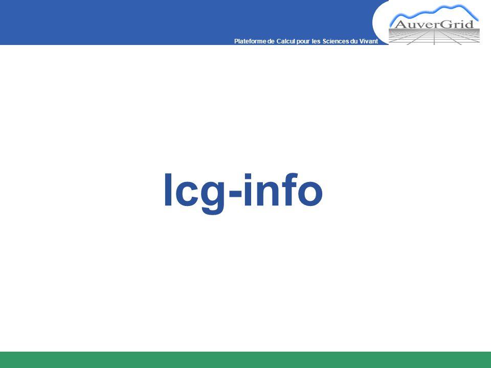 Plateforme de Calcul pour les Sciences du Vivant lcg-info