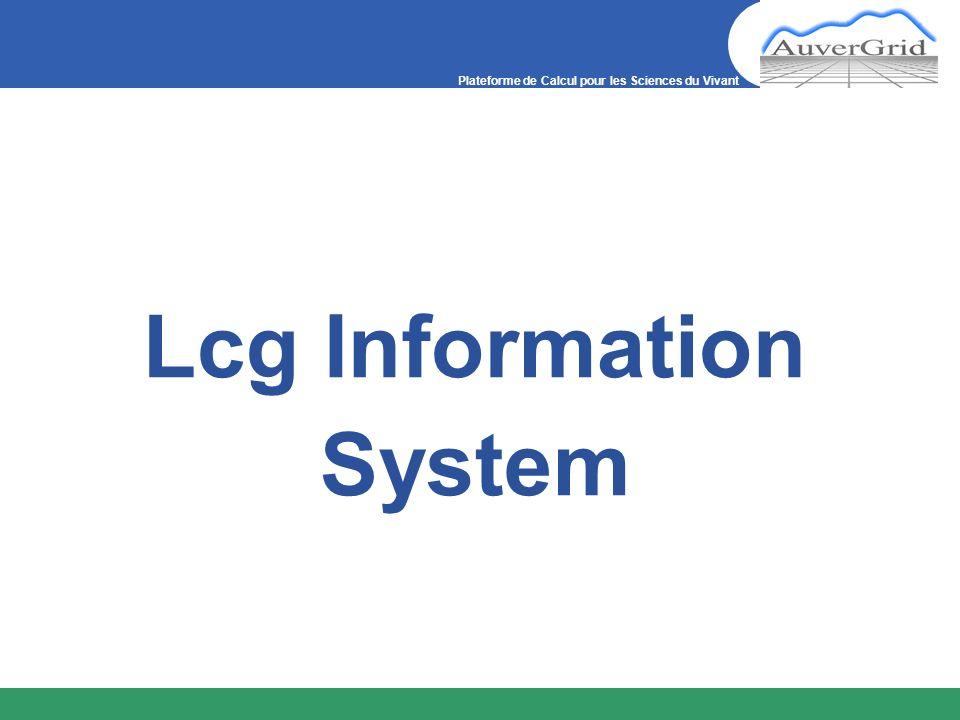 Plateforme de Calcul pour les Sciences du Vivant Lcg Information System