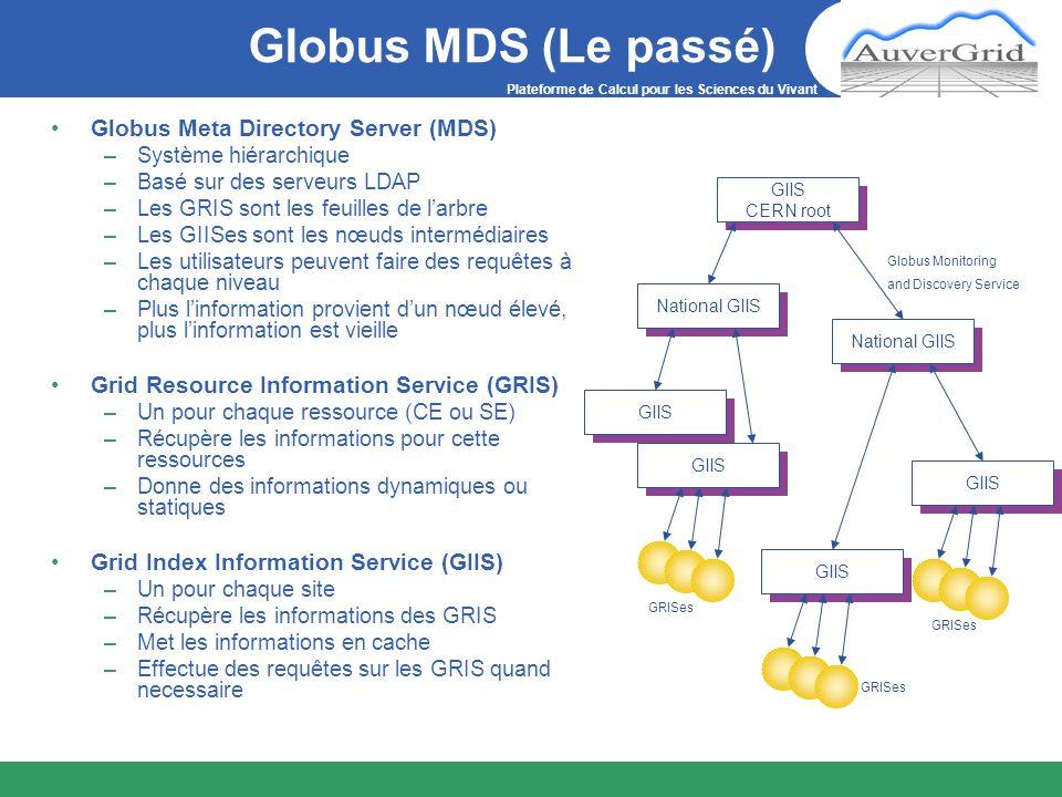 Plateforme de Calcul pour les Sciences du Vivant Globus MDS (Le passé) Globus Meta Directory Server (MDS) –Système hiérarchique –Basé sur des serveurs