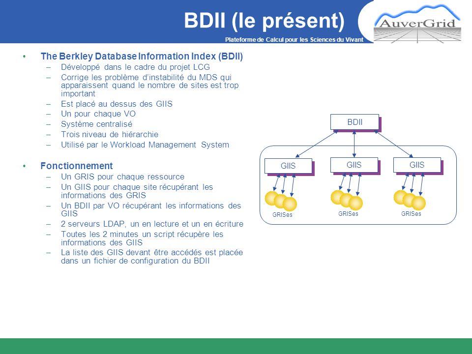 Plateforme de Calcul pour les Sciences du Vivant BDII (le présent) The Berkley Database Information Index (BDII) –Développé dans le cadre du projet LC